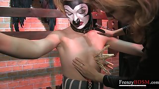 FrenzyBDSM Mature Domina coupled with Sadistic Clamps Play